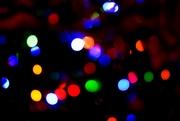 25th Dec 2018 - Happy Christmas