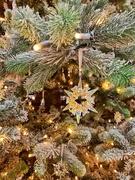 24th Dec 2018 - Christmas star.