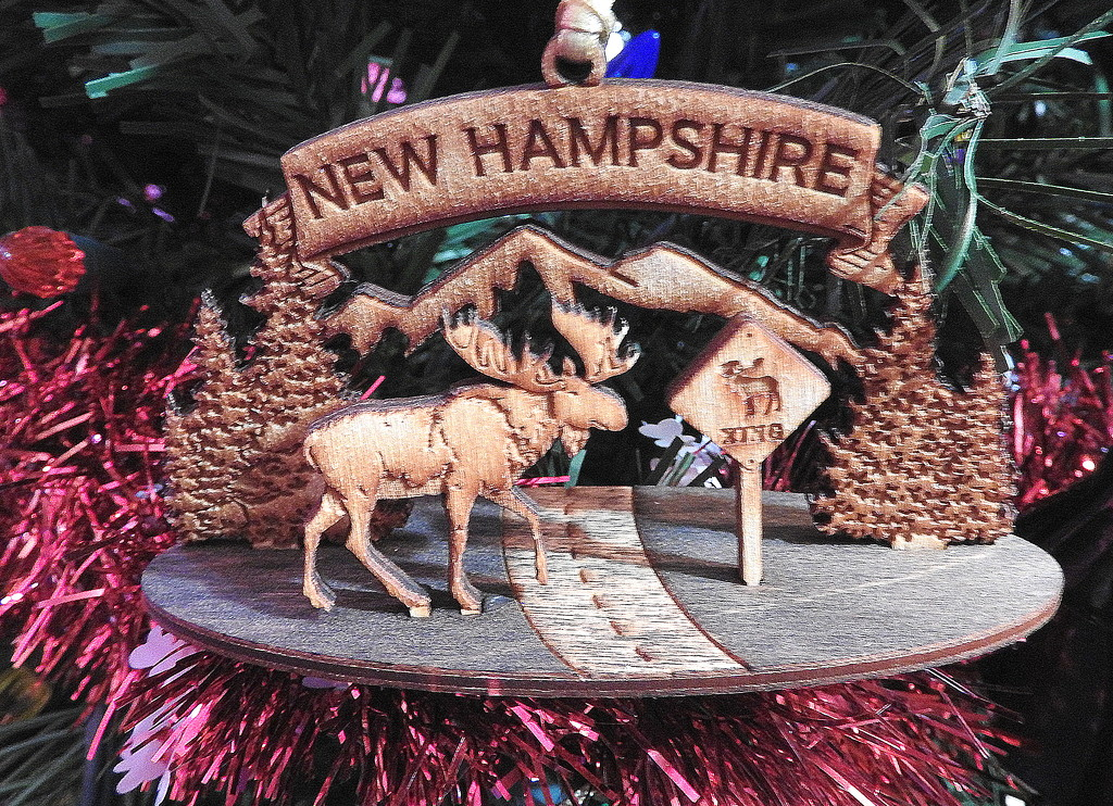 Merry Christ-moose from the 'Shire by homeschoolmom