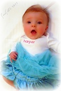 6th Jan 2011 - Baby Blue Tutu