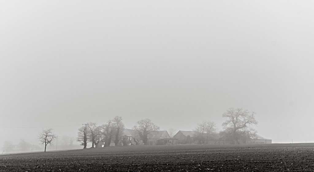 Paimpont 2018: Day 275 - Foggy Farm by vignouse