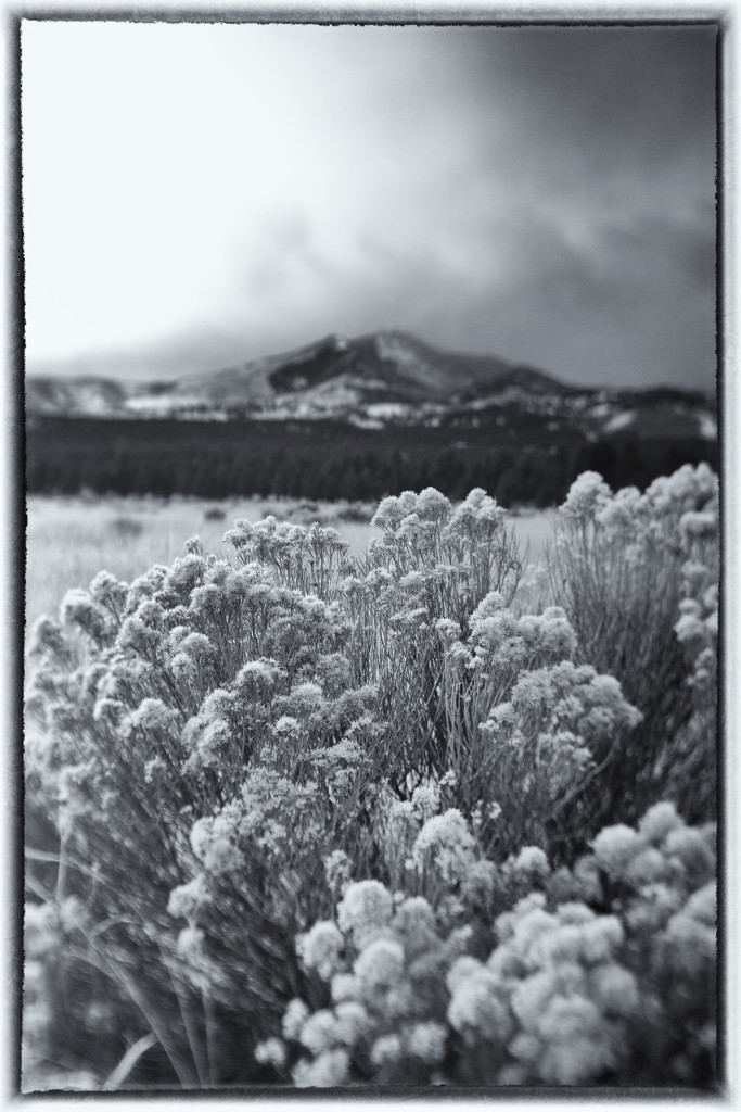Snows about here.. by joysabin