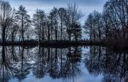 27th Dec 2018 - Still reflections