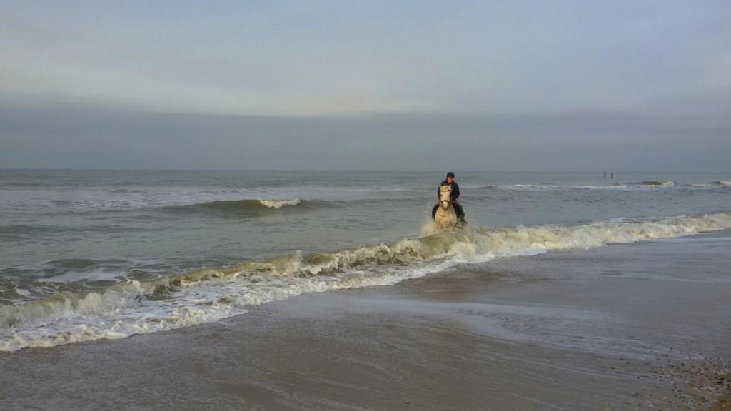 At the beach. by pyrrhula