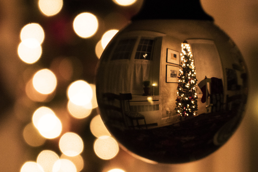 Christmas Ornament by lynbonn