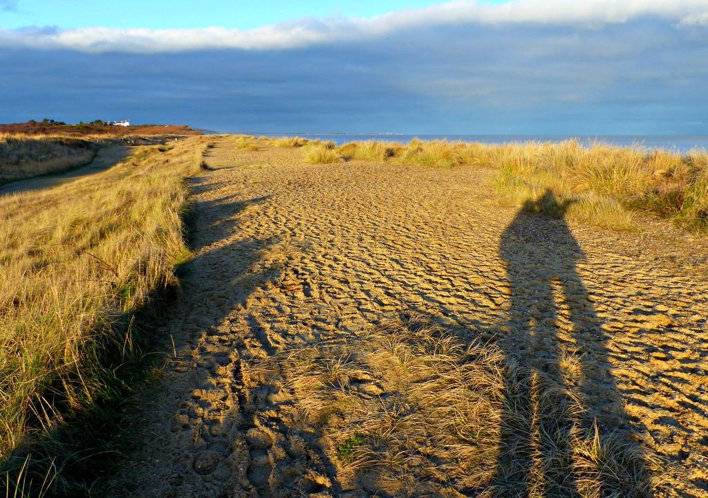 Lengthening shadows by judithdeacon