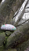 28th Dec 2018 - A painted stone