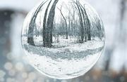 29th Dec 2018 - My New Crystal Ball on a Snowy Day