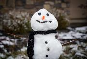 29th Dec 2018 - A Little Snow, A Little Snowman
