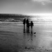 Noon at winter beach by joansmor
