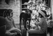 25th Dec 2018 - Christmas Morning