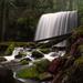 Above Grotto Falls by teriyakih