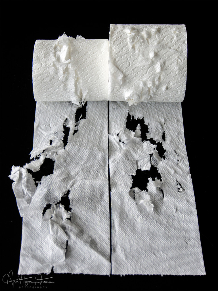What is it about cats and toilet paper??? by atchoo