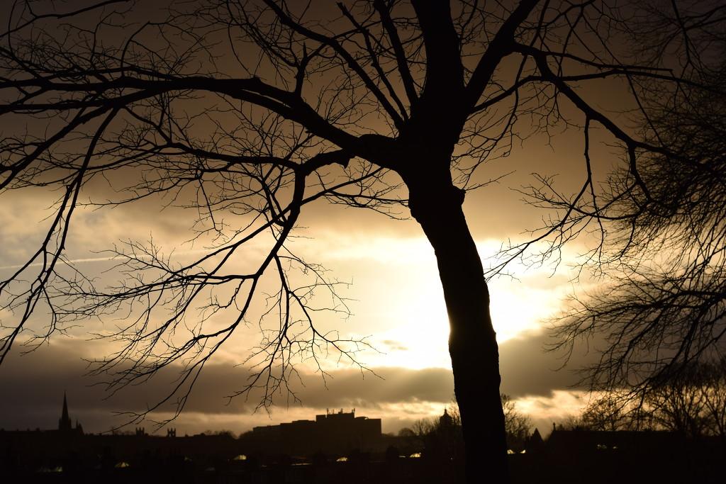 last light by christophercox