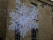 31st Dec 2018 - Decoration in Rose Crescent, Cambridge