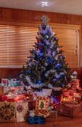 25th Dec 2018 - Christmas tree