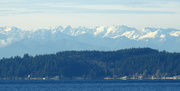 1st Jan 2019 - Olympic Mountains