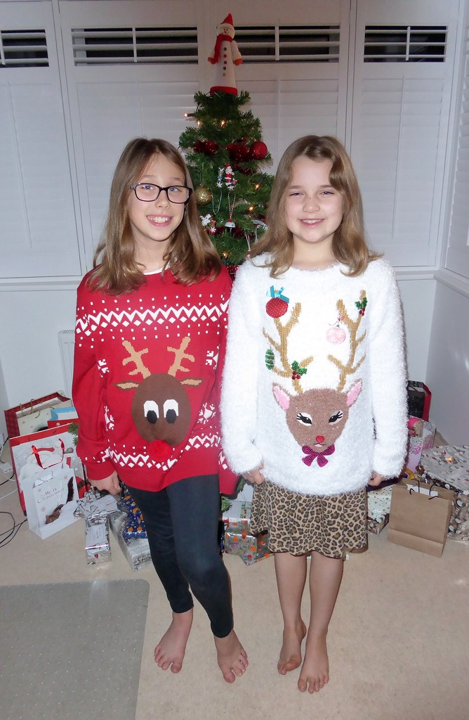 Christmas Jumpers  by susiemc