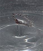 1st Jan 2019 - Water Splash