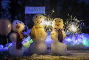 1st Jan 2019 - Happy New Year from The Snow Family!  Image #27