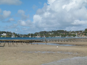 2nd Jan 2019 - Oyster Beds