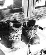 3rd Jan 2019 - Daily Boots