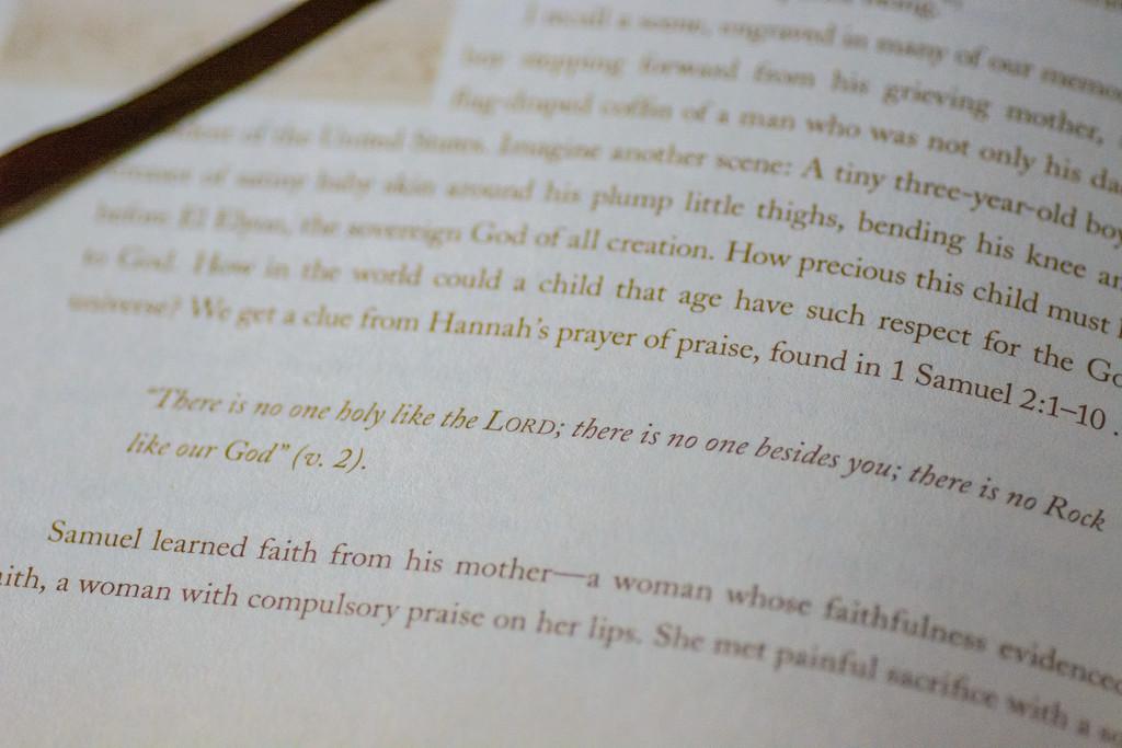 study on david by jackies365