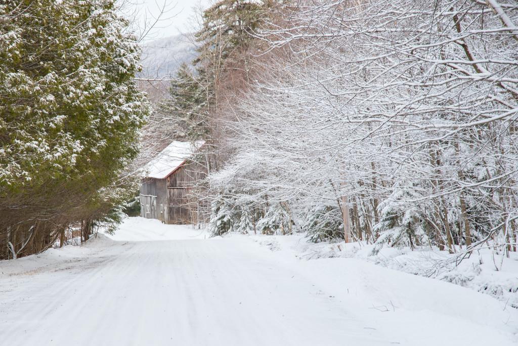 1/365 Winter Barn by dora