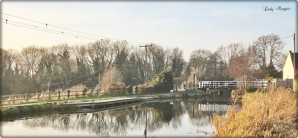 A Chilly Walk along the Canalside by ladymagpie