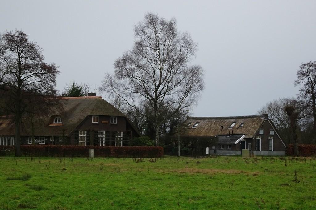 rural by gijsje
