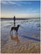 5th Jan 2019 - Liked the shadow and reflection of Sadie, and the statue of course!