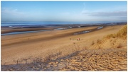 6th Jan 2019 - Formby Point with its miles and miles of sand
