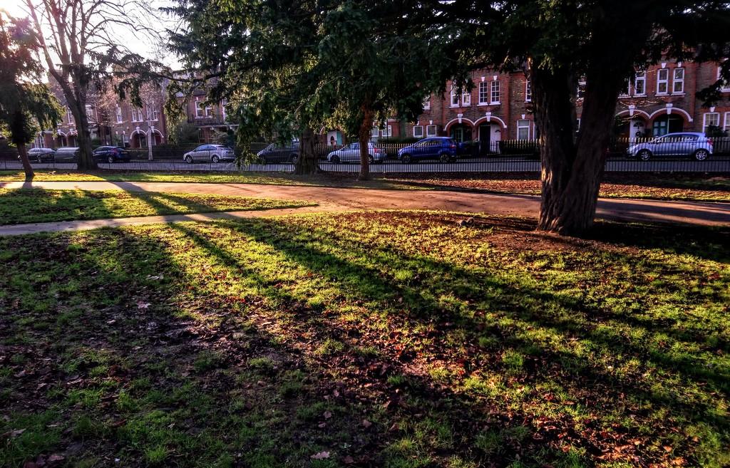 Park shadows by boxplayer