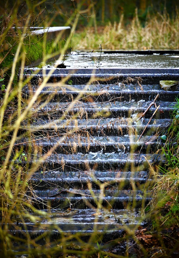 Willingham Waterfall by carole_sandford