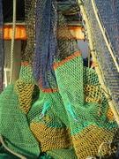 9th Jan 2019 - Fishing Fleet Series