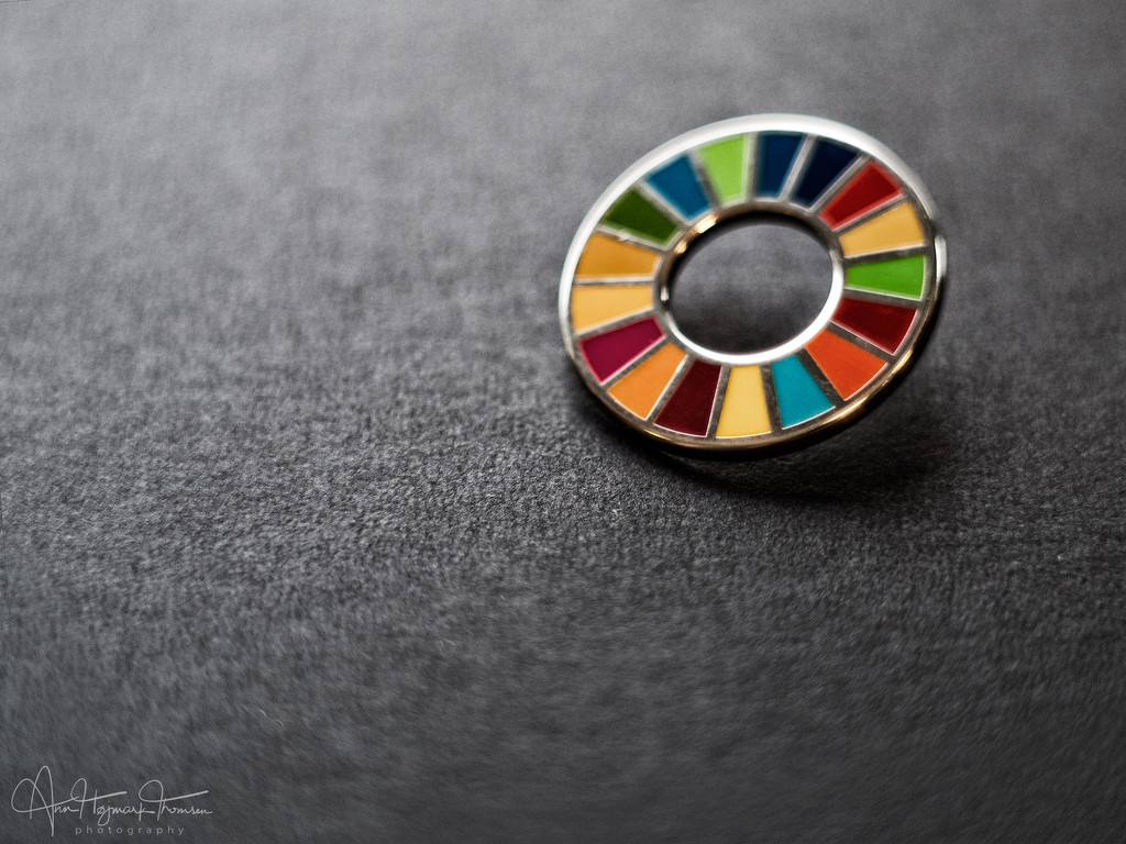 Sustainable Development Goals by atchoo