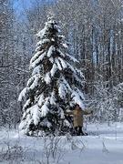 8th Jan 2019 - A Tree Hugger in my Backyard!
