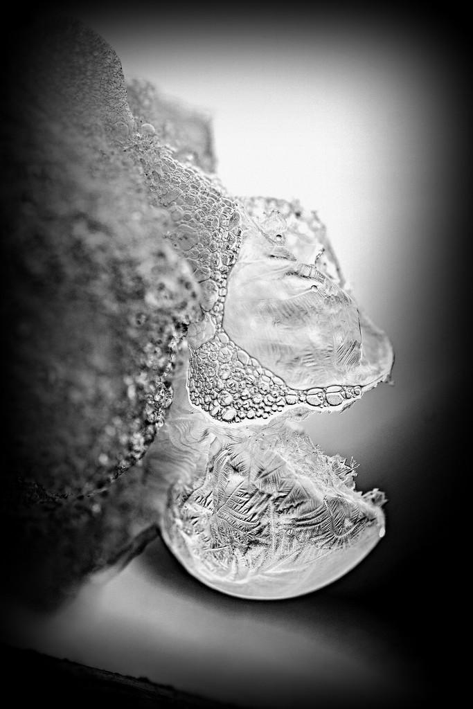 Don't Burst my Bubble ... by farmreporter