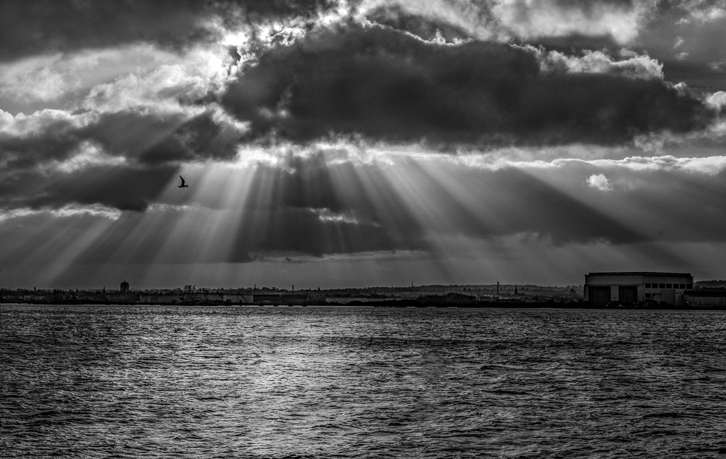 River rays by inthecloud5