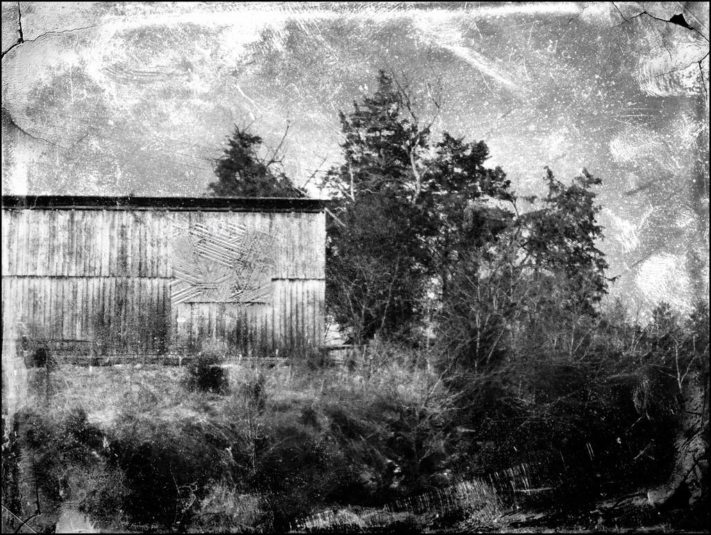 Old Barn by olivetreeann