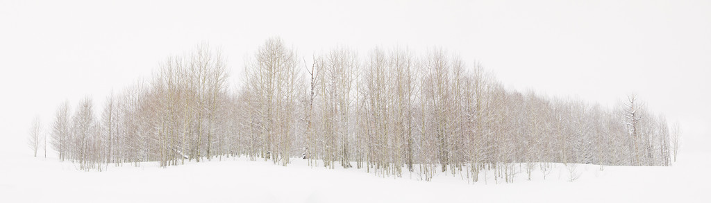 Embrace the Snow by exposure4u