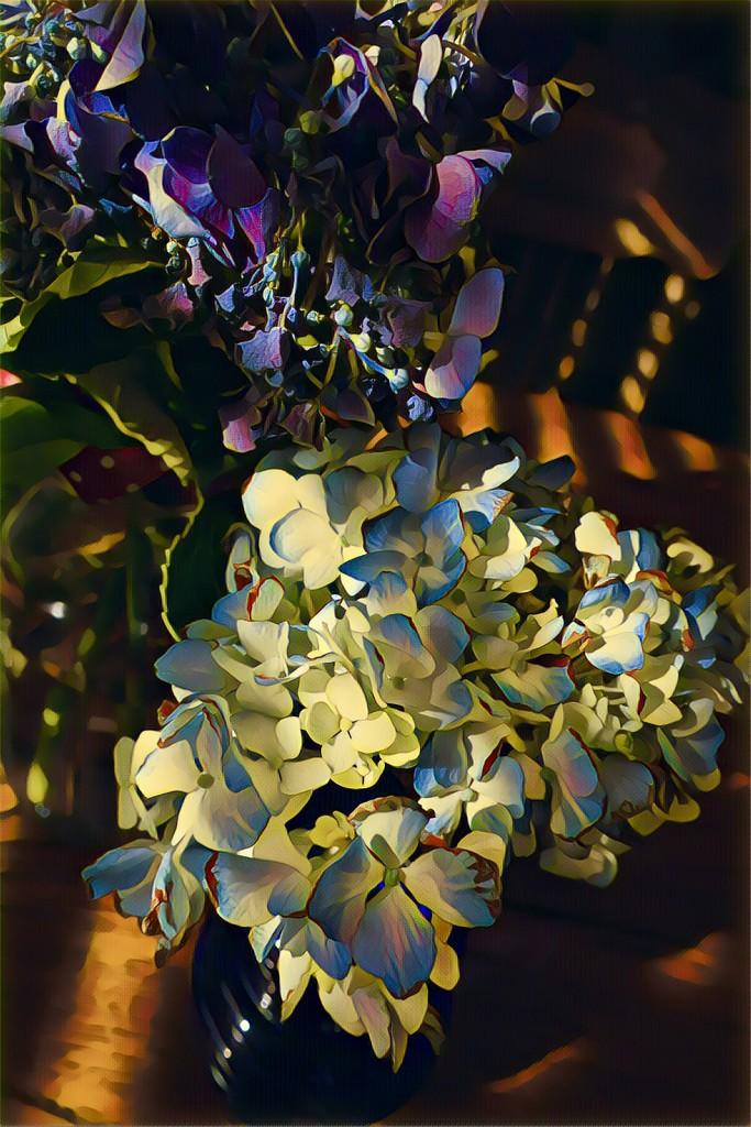 Hydrangeas in the sunshine  by louannwarren