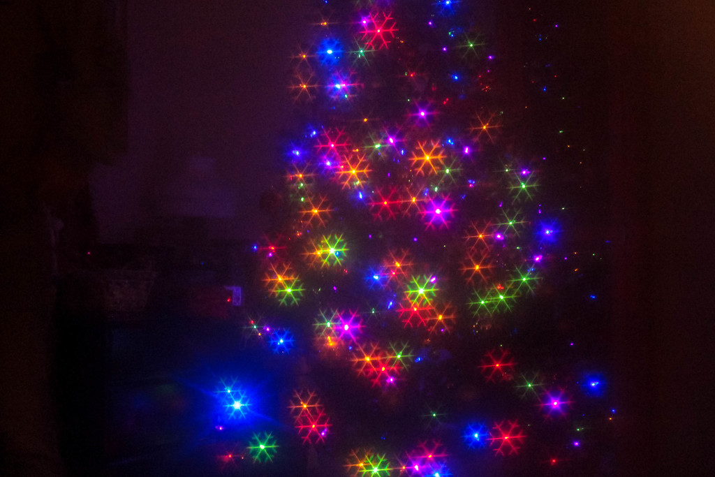 Oh Christmas Tree by mittens