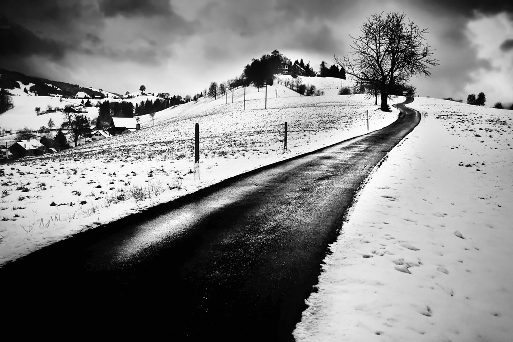 2019-01-09 the winding road by mona65