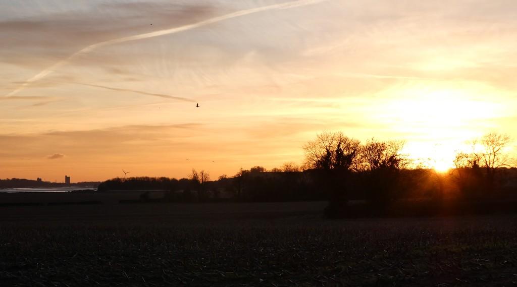 Sunset by flowerfairyann