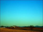 8th Jan 2019 - Virginia Farm in the Golden Hour