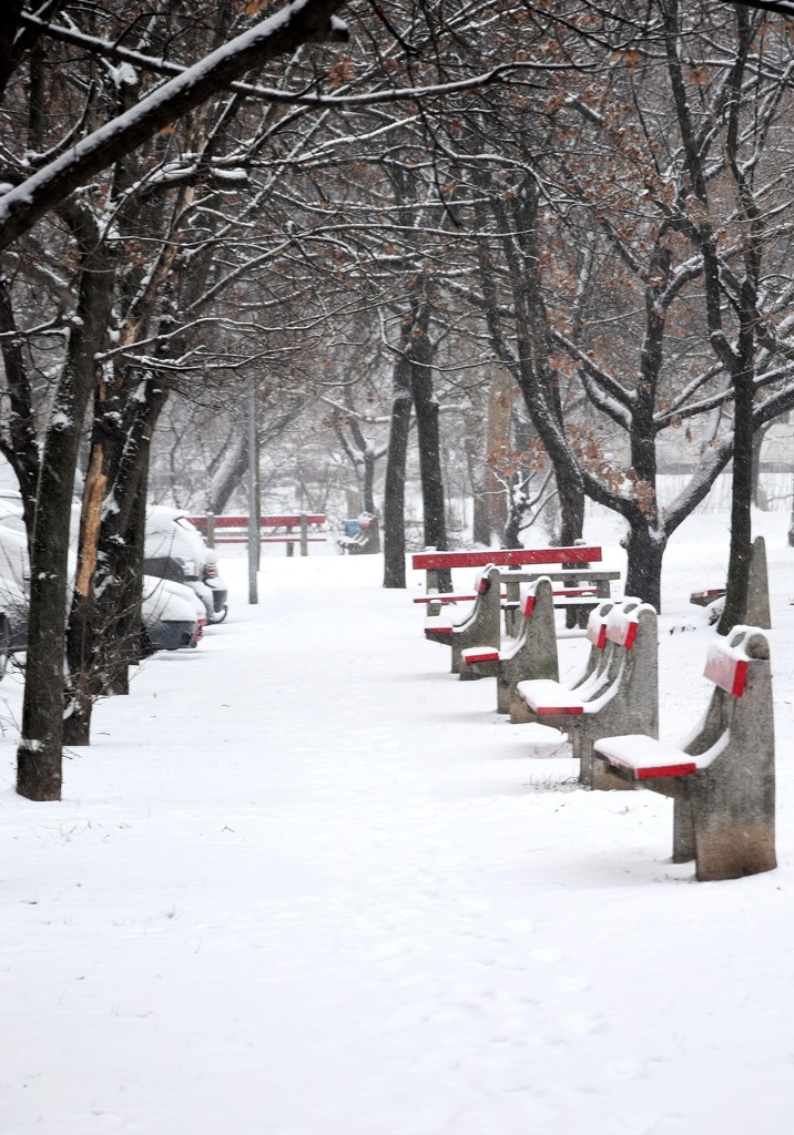 Empty promenade with snow the and red benches by kork