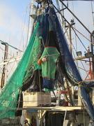 11th Jan 2019 - Fishing Fleet series