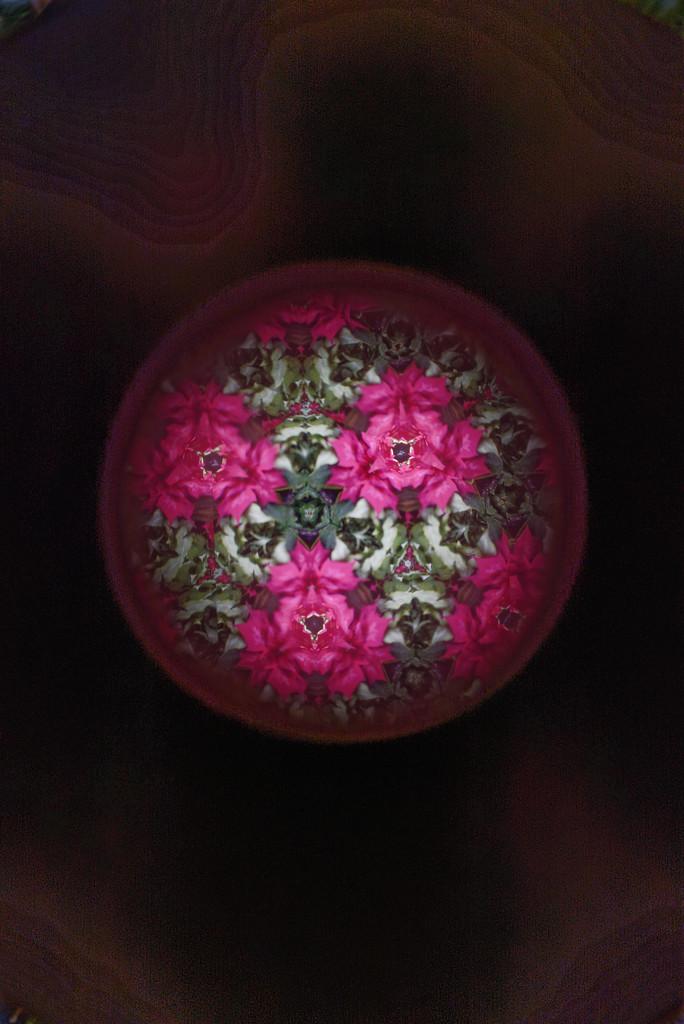 kaleidoscope by rminer