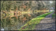 9th Jan 2019 - A lovely stroll along the canal after a week of being cooped up with a bad cold!